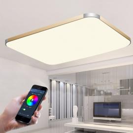 Светильник светодиодный управляемый потолочный