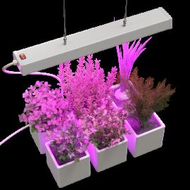 Светодиодные светильники и лампы для растений