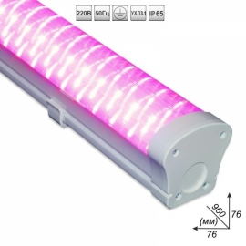 Светодиодный светильник ДСП-45 Вт «Фито»